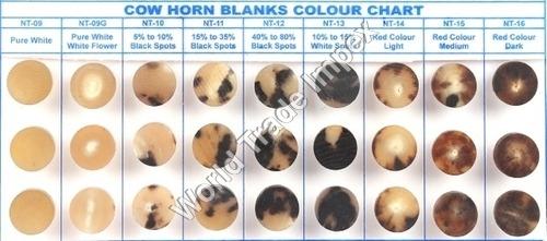 COW HORN CHART