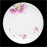 Square Oriole Plate