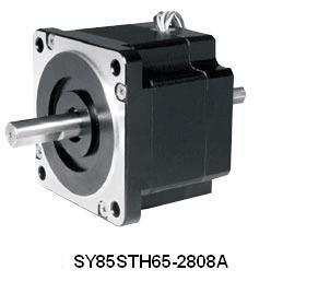 Soyo Stepping SY85STH65-2808A
