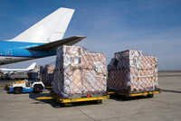 International Air Cargo Solutions