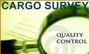 Survey Of Cargo