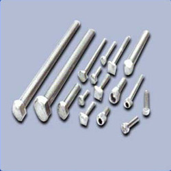 Stainless Steel Fasteners for Food Processing Indu