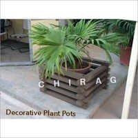Fibreglass Plant Pots