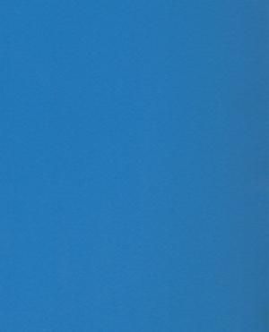robin-blue