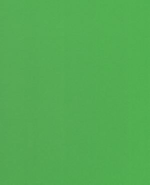 flouroscent-green