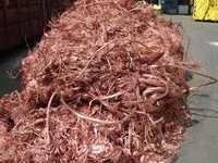 Copper Scraps Birch