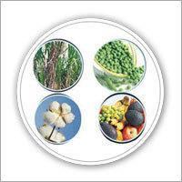 Biofix N Fertilizers