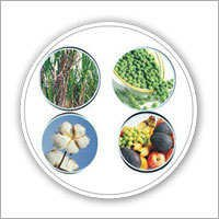 Biofix N Fertilizers