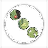 Biovert Fertilizers