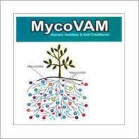 Mykovam Biofertilizer