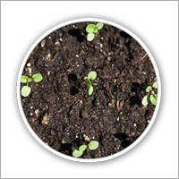 Aerobic Biocomposting System