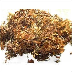 Raw Sargassum Seaweed