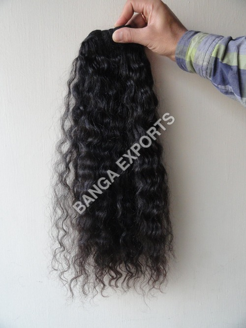 Curly Indian Hair