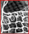 Nylon Safety Net