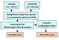 SMP/WMP/ Dairy whitener Plant
