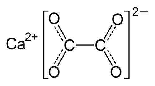 Calcium Oxalate