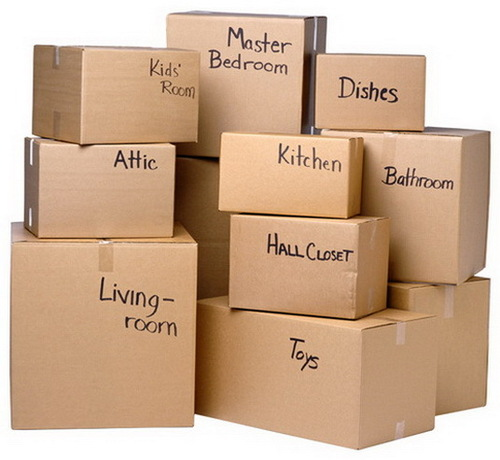 Freight & Packing Services