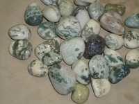Zebra Polished Pebbles