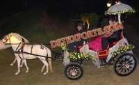 SMALL WEDDING HORSE CARRIAGE