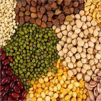 Cooking Pulses