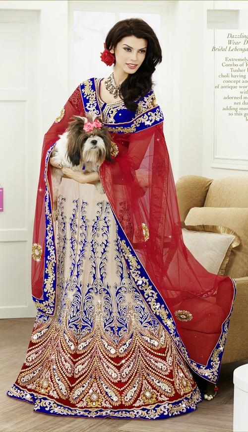 Dazzling Party Wear Designer Bridal Lehenga Choli