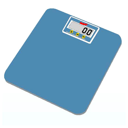 Portable Electronic Person Scale