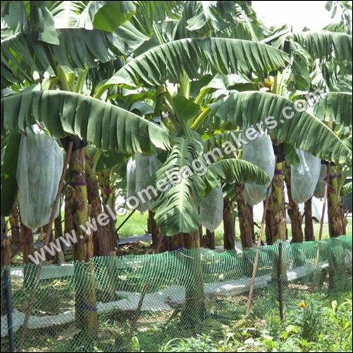 Organics Food Safety Plastic Bags