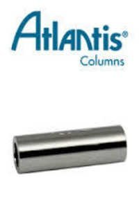Atlantis Sentry Guard Columns