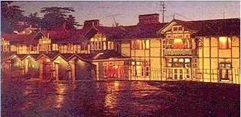 Shimla Hotel Booking Services