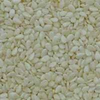 Superb Quality Hulled Sesame Seed