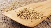 Superfine Natural Sesame Seed 99% Purity