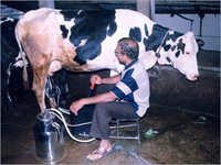 Hand Operated Milking Machine