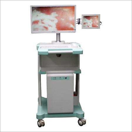 Advanced Endoscopic Workstation