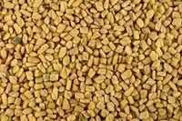 Fenugreek Seeds At Standard Price