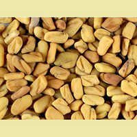 Supreme Quality Fenugreek Seeds