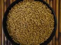 Machine Clean Fenugreek Seeds