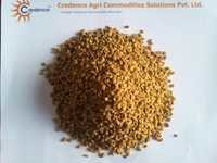Fine Quality Fenugreek Seeds low ash content