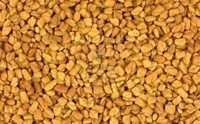 Standard Quality Fenugreek Seeds low ash content
