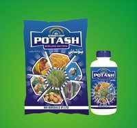 Potash Mobilizing Bacteria