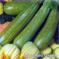 Zucchini Green Seeds