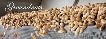 Earthy Nut/ Peanut Seeds