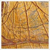 Rain Forest Gold Antiqe Marble