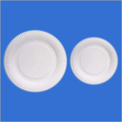 Disposable Wrinkled Paper Plates