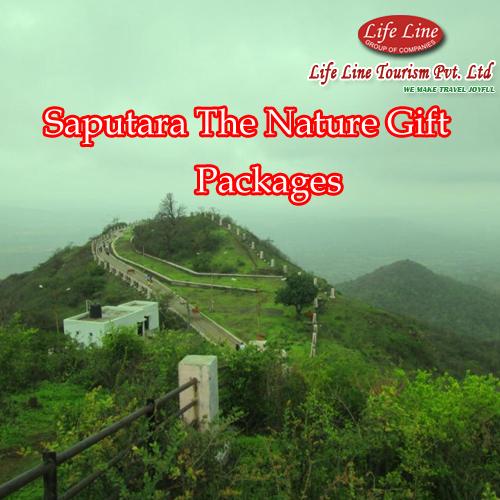 Saputara Tour Packages