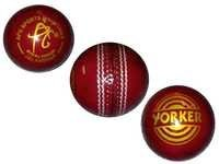 APG Cricket Ball (Yorker)