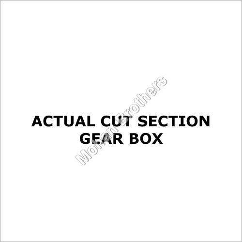 Section Model Gear Box