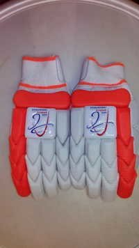APG Cricket Batting Gloves (Extreme)