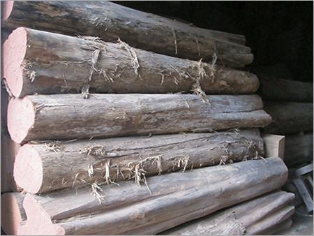 Ivory Teak Wood