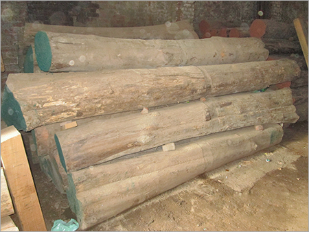 Industrial Teak Woods Logs