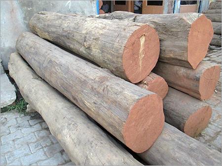 Burma Teak Logs Burma Teak Logs Exporter Importer